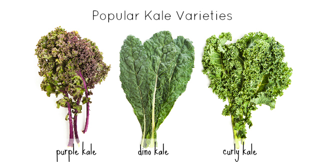 Kale loaded with goodness